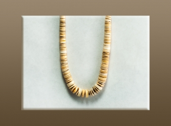 Cream Shell Heishe Necklace